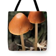 Tall Dark And Handsome Tote Bag