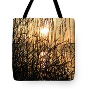 Tall Grass 2 Tote Bag