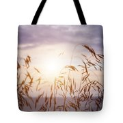 Tall Grass At Sunset Tote Bag