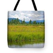 Tall Grasses In Swan Lake In Grand Teton National Park-wyoming Tote Bag