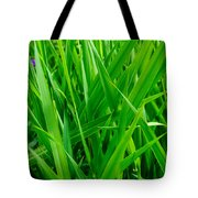 Tall Green Grass Tote Bag