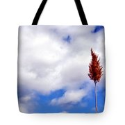 Tall Trunks Tote Bag