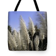 Tall Wispy Pampas Grass Tote Bag