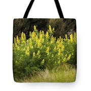 Tall Yellow Lupin Tote Bag