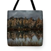 Tamarack Reflections Tote Bag