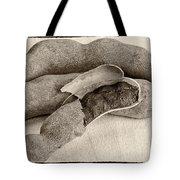 Tamarindo Whole Sepia Tote Bag