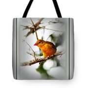 Tanager 4296 Tote Bag