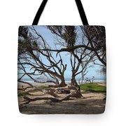 Tangle Of California Trees Tote Bag