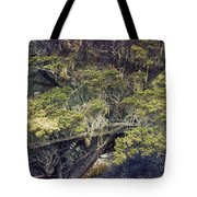 Tangled Neighbors Of The Lone Cypress Tote Bag