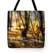 Tangled Sun - Featured 3 Tote Bag