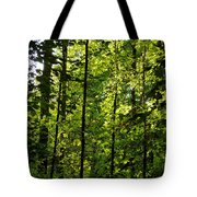 Tannehill Forest Tote Bag