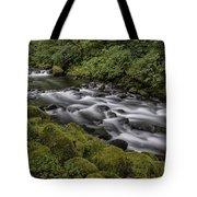 Tanner Creek Tote Bag