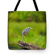 Tantalizing Tricolored Tote Bag