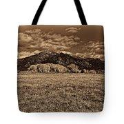 Taos Mountain In Platinum  Tote Bag
