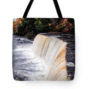 Taquamenon Falls II Tote Bag