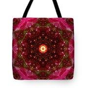 Tarantula Nebula IIi Tote Bag