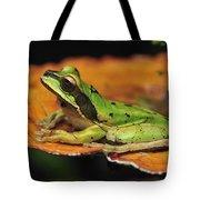 Tarraco Treefrog On Mushroom Costa Rica Tote Bag
