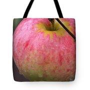 Taste Of Autumn Tote Bag