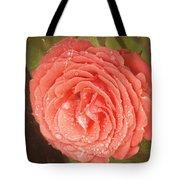 Tattered Rose Tote Bag