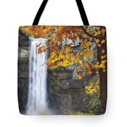 Taughannock Falls And Maple Tote Bag