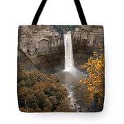 Taughannock Falls Park Tote Bag