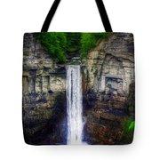 Taughannock Falls Ulysses Ny Tote Bag