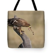 Tawny Eagle With Prey Tote Bag