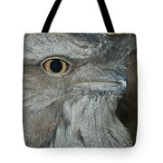 Tawny Frogmouth Tote Bag