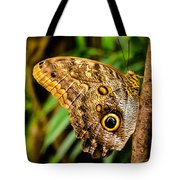 Tawny Owl Butterfly Tote Bag