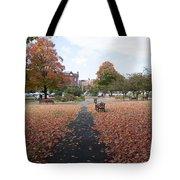 Taylor Park St Albans Vermont Tote Bag