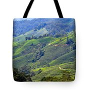 Tea Plantation In The Cameron Highlands Malaysia Tote Bag