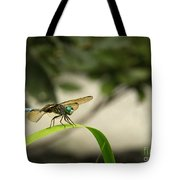 Teal Dragonfly Tote Bag