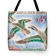 Teal Study Of Migration-museum Of Paris Tote Bag