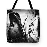 Team Work - Mules 2225-012-bw Tote Bag