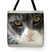 Tears Of A Cat Tote Bag