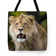 Teenage King Of The Beast Tote Bag