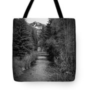 Telluride Stream Tote Bag