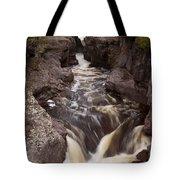 Temperance River Scene 1 Tote Bag