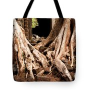 Temple Ruins 02 Tote Bag