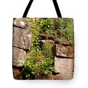 Temple Ruins 05 Tote Bag