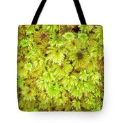 Tender Fresh Green Moss Background Texture Pattern Tote Bag