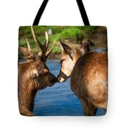 Tender Kiss. Deer In The Pamplemousse Botanical Garden. Mauritius Tote Bag by Jenny Rainbow