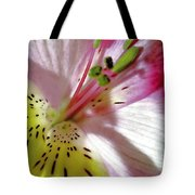 Tender Lily With Shadow  Tote Bag