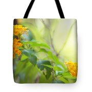 Tenderness Of Morning Tote Bag