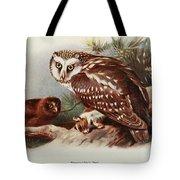 Tengmalms Owl Tote Bag