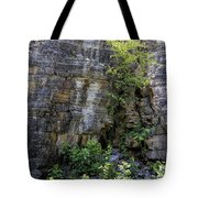 Tennessee Limestone Layer Deposits Tote Bag