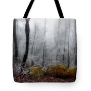 Tennessee Mountain Frost Tote Bag