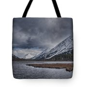 Tern Lake Tote Bag