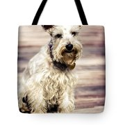 Terrier On Deck Tote Bag
