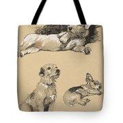 Terriers, 1930, Illustrations Tote Bag